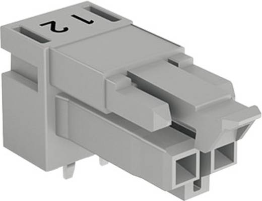 Netz-Steckverbinder WINSTA MINI Serie (Netzsteckverbinder) WINSTA MINI Buchse, Einbau horizontal Gesamtpolzahl: 2 16 A G
