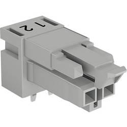 Sieťový konektor WAGO zásuvka, vstavateľná horizontálna, počet kontaktov: 2, 16 A, 250 V, sivá, 100 ks