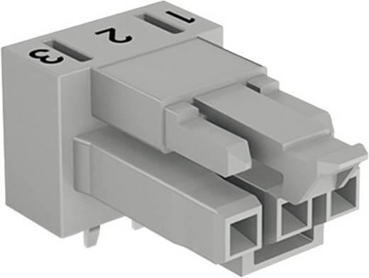 Netz-Steckverbinder WINSTA MINI Serie (Netzsteckverbinder) WINSTA MINI Buchse, Einbau horizontal Gesamtpolzahl: 3 16 A W
