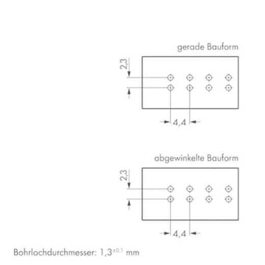 Netz-Steckverbinder WINSTA MINI Serie (Netzsteckverbinder) WINSTA MINI Buchse, Einbau horizontal Gesamtpolzahl: 4 16 A S