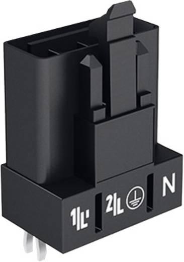 Netz-Steckverbinder WINSTA MINI Serie (Netzsteckverbinder) WINSTA MINI Stecker, Einbau vertikal 16 A Pink WAGO 100 St.