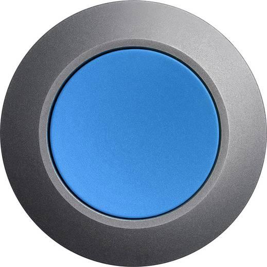 Drucktaster Frontring Metall, Betätiger flach Blau Druckentriegelung Siemens SIRIUS ACT 3SU1060-0JA50-0AA0 1 St.