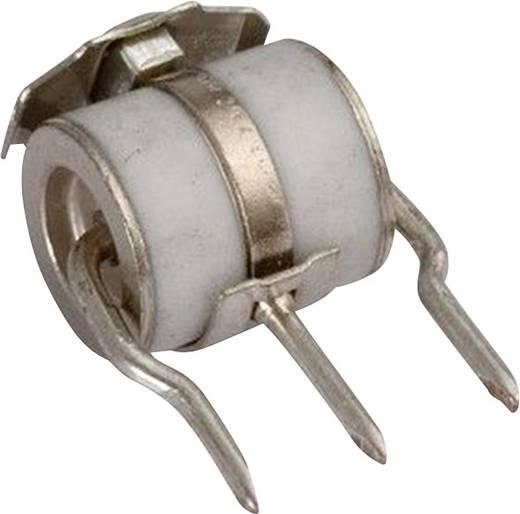 Gasableiter radial bedrahtet 250 V 12 kA Citel BT RC 250/12 50 St.