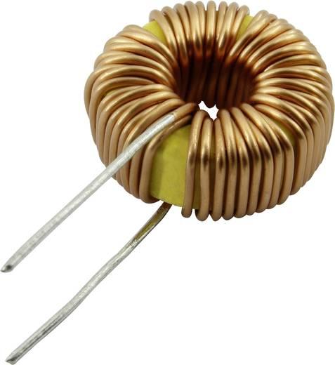 TOI-13-5-101KV Drossel radial bedrahtet rund 100 µH 2.8 A 1 St.