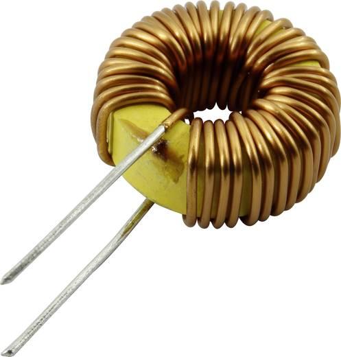 TOI-15-6-101KV Drossel radial bedrahtet rund 100 µH 0.5 A 1 St.