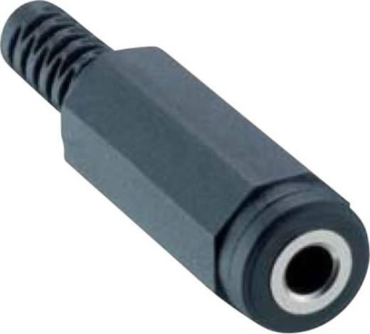 Lumberg 1522 02 Klinken-Steckverbinder 3.5 mm Buchse, gerade Polzahl: 2 Mono Schwarz 1 St.