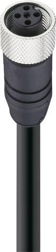 Belden 27310 Sensor-/Aktor-Datensteckverbinder, konfektioniert M12 Buchse, gerade 15 m Polzahl: 5 1 St.
