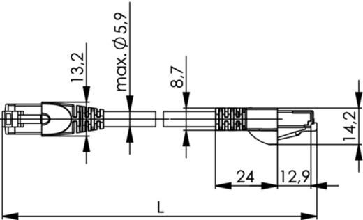 Telegärtner RJ45 Netzwerk Anschlusskabel CAT 6a S/FTP 0.25 m Grau Flammwidrig, Halogenfrei