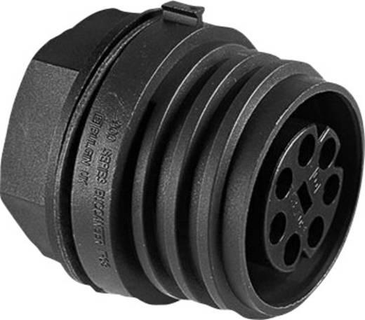 Einbaustecker der Serie EXP-0931 Pole: 2 EXP-0931/02/P Bulgin 1 St.