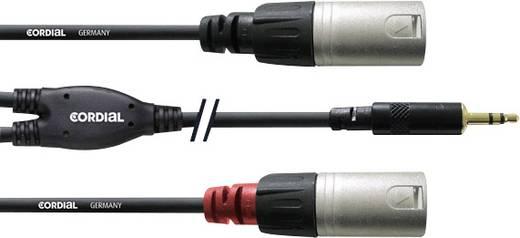 Audio Adapterkabel [1x Klinkenstecker 3.5 mm - 2x XLR-Stecker] 3 m Schwarz Cordial
