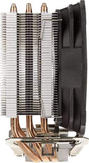 EKL Alpenföhn Ben Nevis CPU-Kühler mit Lüfter