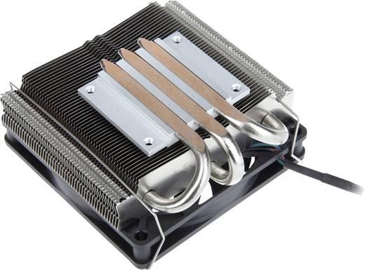 EKL Alpenföhn Silvretta CPU-Kühler mit Lüfter