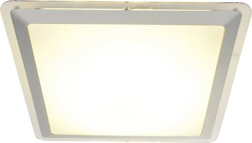 LED-Deckenleuchte 12 W Warm-Weiß Naeve 1160359 Silber