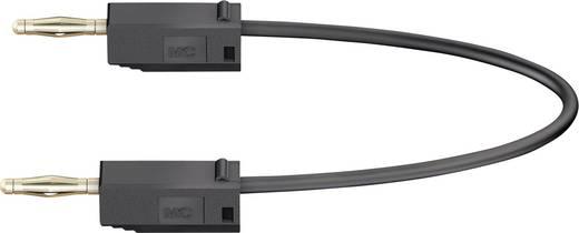 Messleitung [Lamellenstecker 2 mm - Lamellenstecker 2 mm] 0.15 m Schwarz Stäubli LK205