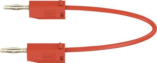 Stäubli LK205 Messleitung [Lamellenstecker 2 mm - Lamellenstecker 2 mm] 0.45 m Rot