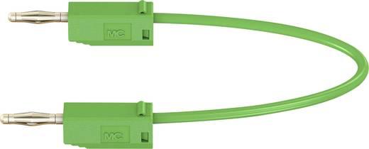 Messleitung [Lamellenstecker 2 mm - Lamellenstecker 2 mm] 0.3 m Grün Stäubli LK205