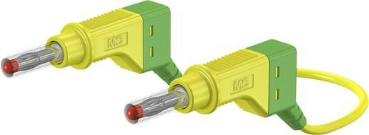 Sicherheits-Messleitung [Lamellenstecker 4 mm - Lamellenstecker 4 mm] 1 m Grün-Gelb Stäubli XZG425/SIL