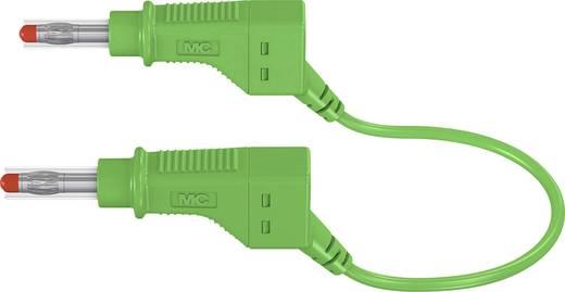 Sicherheits-Messleitung [Lamellenstecker 4 mm - Lamellenstecker 4 mm] 2 m Grün Stäubli XZG425/SIL