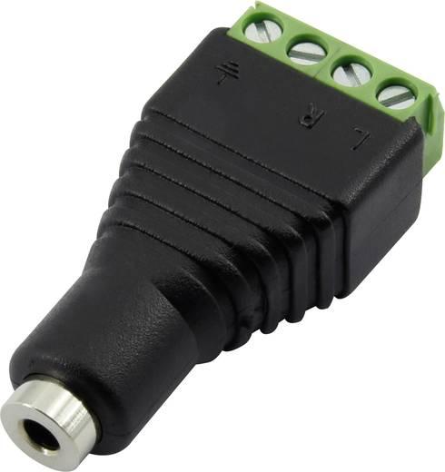 Klinken-Steckverbinder 2.5 mm Buchse, gerade Polzahl: 4 Stereo Schwarz Conrad Components 93013c1118 1 St.