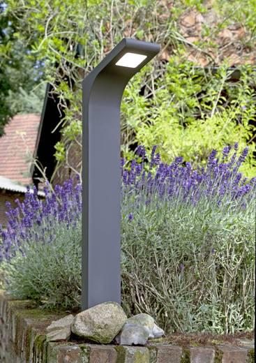 LED-Außenstandleuchte 3.6 W Neutral-Weiß Brilliant G66585/63 Derek Anthrazit