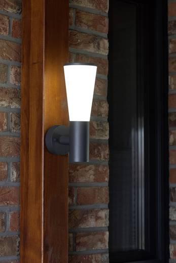 Brilliant Orco G96244/63 LED-Außenwandleuchte 9 W Kalt-Weiß Anthrazit