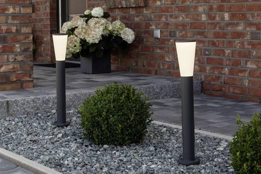 LED-Außenstandleuchte 9 W Kalt-Weiß Brilliant G96245/63 Orco Anthrazit