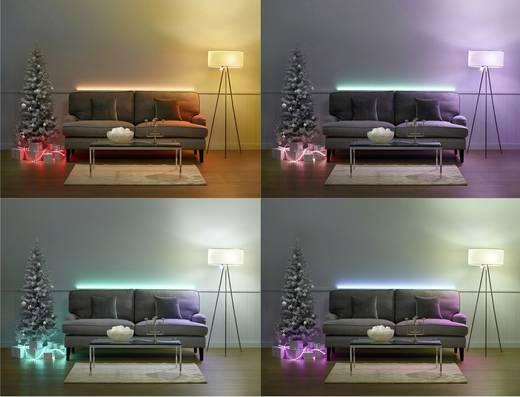 Philips Lighting Hue LED-Stripe (Starter-Kit) Lightstrip Plus Basis LED fest eingebaut RGB