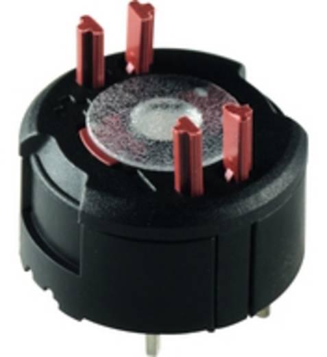 Kontaktelement mit Lichtleiter 1 Öffner 250 V RAFI FS 1.20.126.201/9000 30 St.