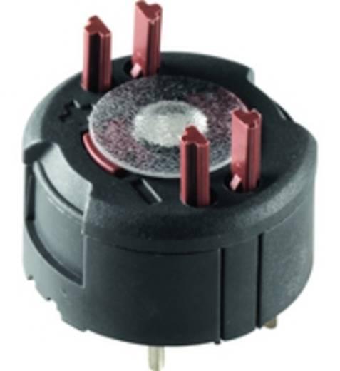 Kontaktelement 2 Öffner 35 V RAFI FS 1.20.126.004/9000 30 St.