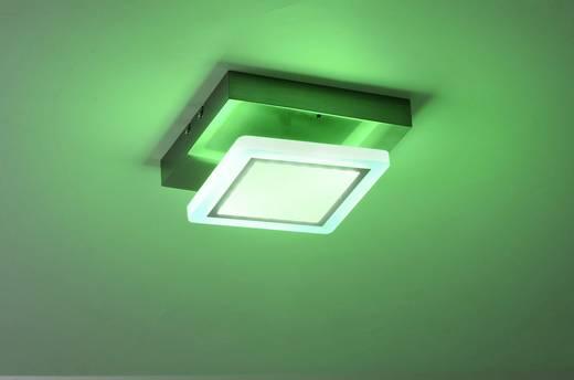 Paul Neuhaus Q® LED Decken- und Wandleuchte Q®-Vidal LED fest eingebaut 9.6 W Warm-Weiß, RGB