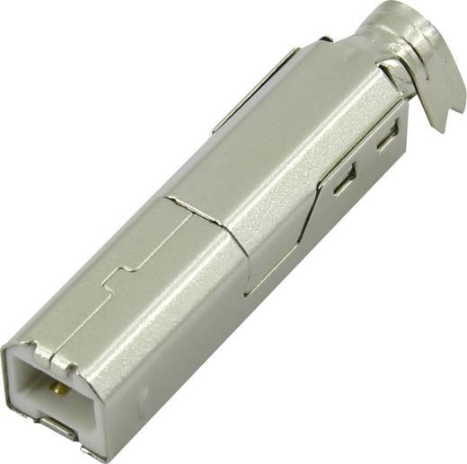 USB B Stecker Stecker, gerade DS1108-WN0 Connfly Inhalt: 1 St.