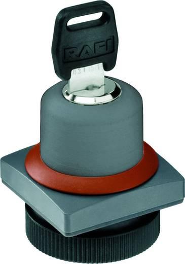 Schlüsselschalter Silber 1 x 90°/40 ° RAFI 22 FS+ RAFIX 22 FS+ 1.30.275.552/0000 2 St.