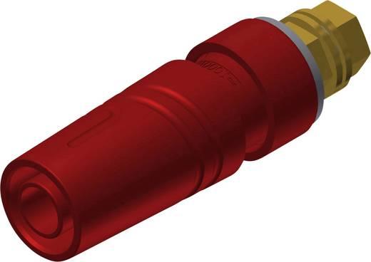 Sicherheits-Laborbuchse Buchse, Einbau vertikal Stift-Ø: 4 mm Rot SKS Hirschmann SAB 2600 G M4 Au 1 St.