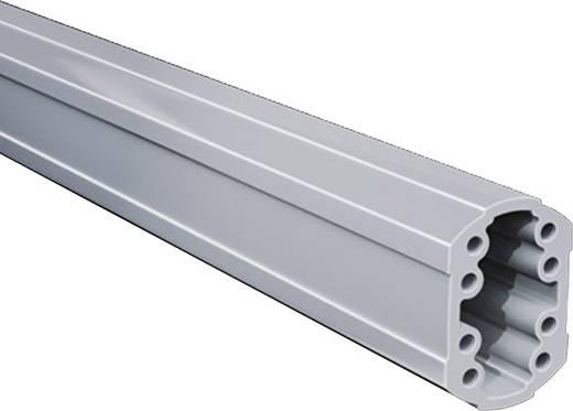 Tragprofil geschlossen Aluminium Hellgrau (L x B x H) 250 x 59 x 85 mm Rittal CP 6206.025 1 St.