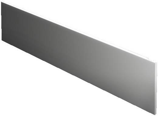 Frontplatte geschlossen (L x B) 100 mm x 800 mm Stahlblech Hellgrau Rittal SV 9672.338 1 St.