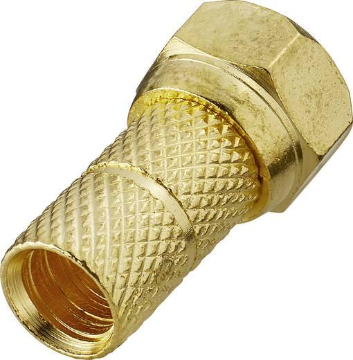 F-Stecker Kabel-Durchmesser: 6 mm