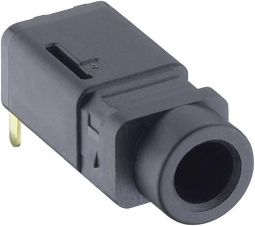 Klinken-Steckverbinder 3.5 mm Buchse, Einbau horizontal Polzahl: 4 Stereo Schwarz Lumberg 1503 16 1 St.