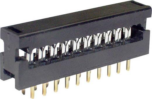 Federleiste LPV25S8 Gesamtpolzahl 8 Anzahl Reihen 2 econ connect 1 St.