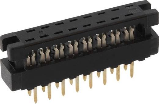 Federleiste LPV2S40 Gesamtpolzahl 40 Anzahl Reihen 2 econ connect 1 St.