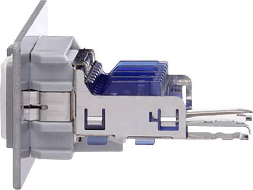 RJ45 Multimedia-Einsatz mit Genderchanger Oehlbach MMT CAT 6