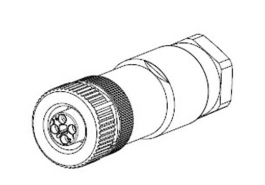 TE Connectivity 2120950-1 Sensor-/Aktor-Steckverbinder, unkonfektioniert M12 Buchse, gerade Polzahl: 4 1 St.