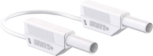 Stäubli 66.8563-10029 Sicherheits-Messleitung [Lamellenstecker 4 mm - Lamellenstecker 4 mm] 1 m Weiß