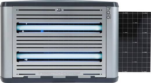 UV-Klebefalle 30 W Insect-O-Cutor Halo 30 HL30-BLACK (B x H x T) 588 x 404 x 118 mm Schwarz 1 St.