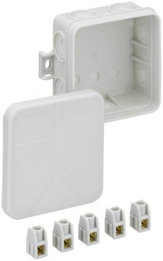 Verbindungsdose (L x B x H) 75 x 75 x 37 mm Spelsberg 33240701 Grau IP55