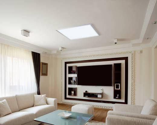 LED-Panel 36 W Kalt-Weiß Renkforce Weiß