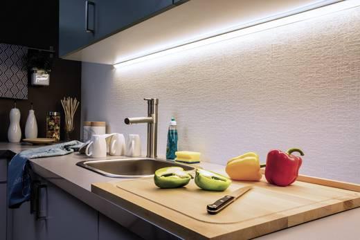 Paulmann LED-Streifen-Basisset mit Stecker 24 V 300 cm Tageslicht-Weiß MaxLED 1000 70589
