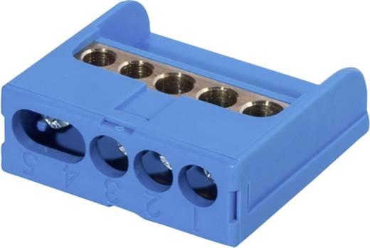 anschlussklemme blau leiter typ n f tronic 7290002. Black Bedroom Furniture Sets. Home Design Ideas