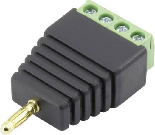 Laborstecker Stecker, gerade Stift-Ø: 3 mm Schwarz Conrad Components 93013c1123 1 St.