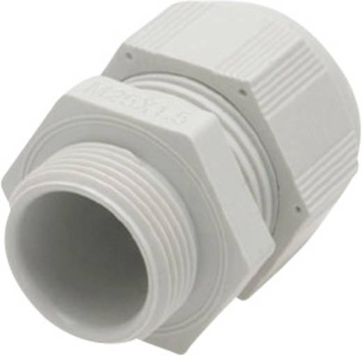 Helukabel HT 99305 Kabelverschraubung PG21 Polyamid Licht-Grau (RAL 7035) 1 St.