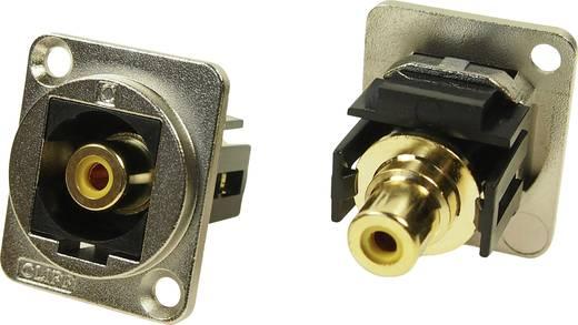 xlr adapter cinch buchse auf cinch buchse gelb adapter. Black Bedroom Furniture Sets. Home Design Ideas